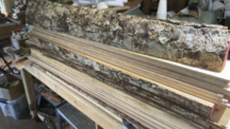 Making the Heronfield Yellow Birch 12 fret 000 (2021-08)
